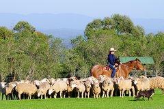 Imagen Tobruk Sheep Station: Farm and Australian Outback Experience