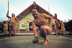 Imagen Rotorua Discovery Te Puia Tour