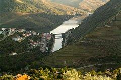 Ver la ciudad,Tours con guía privado,Especiales,Cata de vinos,Excursión a Valle del Duero,Con visita a bodegas incluida