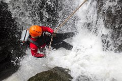 Imagen Full Day Tropical Rainforest Canyoning Adventure from Sydney