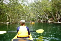 Guided Kayaking Eco Tour through Sydney's Middle Harbour (4 hours)