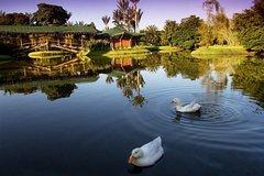 Imagen Private Tour: Botanical Garden José Celestino Mutis of Bogotá