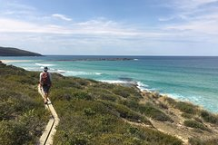 Imagen Murramarang 3-Day Great Coastal Walk from Batemans Bay Including Accommodation and Meals