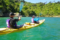 Imagen Full-Day Guided Sea Kayak Trip from Picton