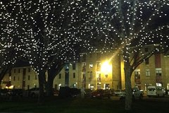 Imagen Private Hobart City By Night Tour