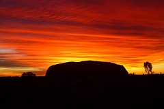 Imagen 3-Day Alice Springs to Ayers Rock Camping Tour Including Kata Tjuta and Kings Canyon