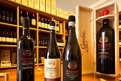 Private Amarone Wine Tasting Tour from Milan by Car