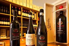 Private Amarone Wine Tasting Tour from Verona