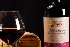 Private Amarone Wine Tasting Tour from Venice