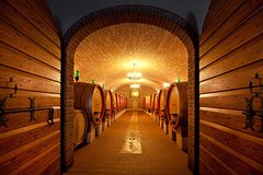 Private Amarone Wine Tasting Tour from Milan by Train