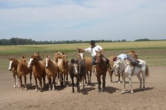 Imagen Ranch trip with private driver