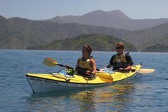 Imagen Half-Day Guided Sea Kayaking Tour from Anakiwa