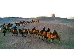 Private camel riding in the Gobi desert