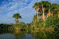 Imagen 2 days 1 night - Tambopata Jungle