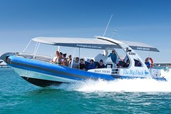 Imagen Seal Island Boat Tour from Victor Harbor