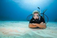 Gran Canaria Gran Canaria 3-Hour Scuba Diving Baptism in Las Canteras Beach 41935P130