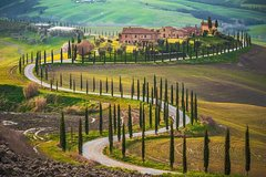 Popular Wine Tasting & Winery Tours in Florence