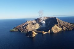 Imagen Shore Excursion: Fly by Plane or Helicopter over Volcano's with Kiwifruit Orchard Cart Tour
