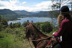City tours,Activities,Adventure activities,Nature excursions,