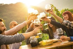 3-Day Tuscany Wine Tour Experience from Rome