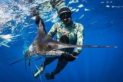 Imagen Spearfishing
