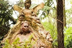 Imagen Dandenong Ranges Nature Day Trip from Melbourne Including William Ricketts Sanctuary