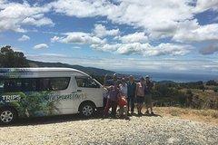 Imagen Abel Tasman and Golden Bay Tour