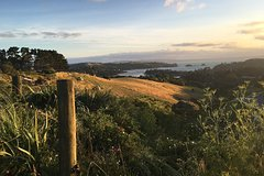 Imagen Waiheke Island Te Ara Hura 5-Day Walking Package