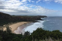 Imagen 1 Day Phillip Island Bass Coast Walk Sightseeing and Penguins Tour