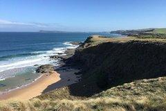Imagen Phillip Island Half Day Punchbowl to Kilcunda Walk