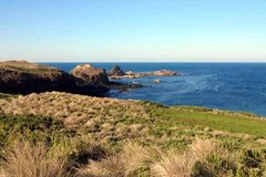Imagen Phillip Island Tour Including Cape Woolamai Walking Trail