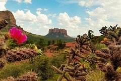 Excursions,Full-day excursions,Excursion to Sedona