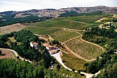 Guided Hiking Tour in Tuscany with Lunch Wine and Olive Oil Tasting