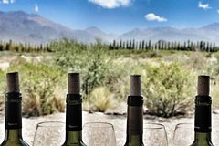 City tours,Gastronomy,Gastronomic tours,Oenological tours,Excursion to Mendoza Wineries