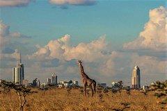 Best of half day Nairobi