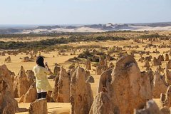 Imagen Full-Day Pinnacles Sandboarding and Yanchep National Park from Perth