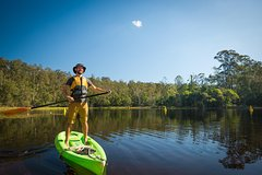 Imagen Walkabout Creek Adventures Stand Up Paddle Board Hire