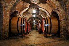 Engagement Wine Tour- Organic Wine & Food Tour in Chianti end with Romantic Dinner