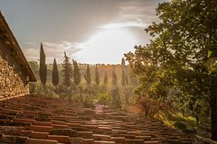 Engagement Tour in Tuscany - Photo, Food & Wine Tour in Chianti Region (Tuscany)