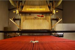 The Master Weavers of Florence & Chianti Wine Tour in Tuscany Landscape