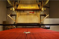 The Master Weavers of Florence, Pisa & Chianti Wine Tour in Tuscany Landscape