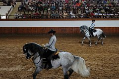 Imagen Full-day Jerez and Cadiz from Seville, with Horse Ballet and Sherry Tasting