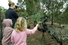 Imagen Full-Day Nature Tour from Perth