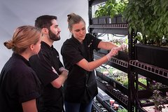 Introduction to Hydroponics & Indoor Farming Class