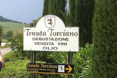 From Rome Wine Tasting in Tuscany