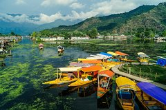 A Private Guided Walking Tour Through Old Srinagar
