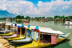 Full day tour of Srinagar with Entrance Fee, Guide & Shikara ride