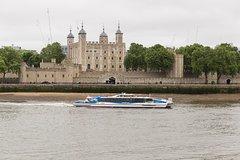 Imagen Croisière en bateau à arrêts multiples Thames Clippers: passe à arrêts multiples