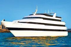 Chicago Odyssey Lake Michigan Lunch Cruise