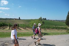 Small-Group Hiking And Picnic In Tuscany